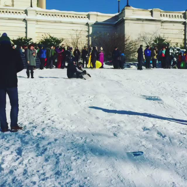 #Sledding on #Capital Hill, made legal by #Congress for 2016 #snow #blizzard #snowmaggedon2016 #dc #Washington https://t.co/963YfHNDU0
