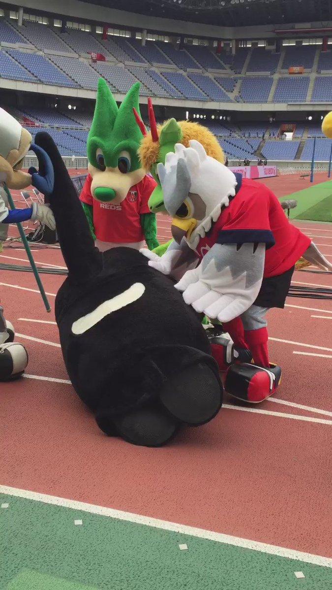 グランパスくん @grampuskun_No1 がひっくり返ってたから、みんなで起こしてあげた。大丈夫だったかなー? #consadole #ドーレくん #フジゼロックススーパーカップ https://t.co/wGx4FQqCQT