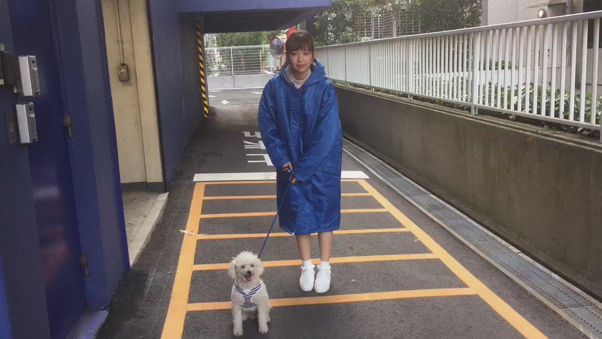 「ひなフェス twitter動画リレー」お次はモーニング娘。16の羽賀朱音さんお願いします! #ひなフェス16 #juicejuice #宮崎由加