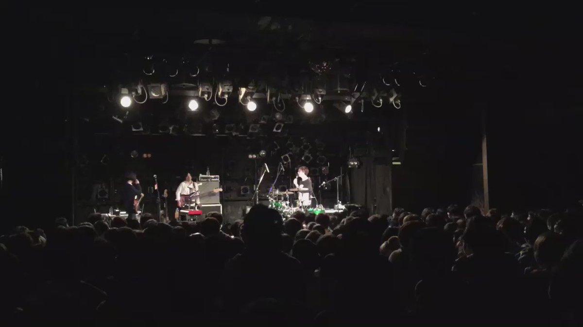 【People In The Box】 先日の名古屋ライブ時のダイゴマン・MC! 今日はCut Fourのリリース日です! カット・フォ〜⤴︎