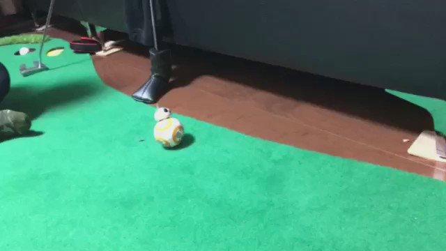 BB-8可愛いすぎる🐸 pic.twitter.com/odQB3oelf2