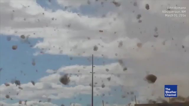 Whoa! A 'tumbleweed #tornado' was spotted in Albuquerque, New Mexico. #NMwx