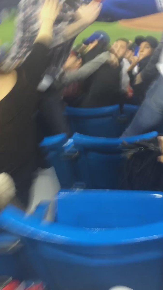 Yankee fan instigates fight, Jays fan takes care of business