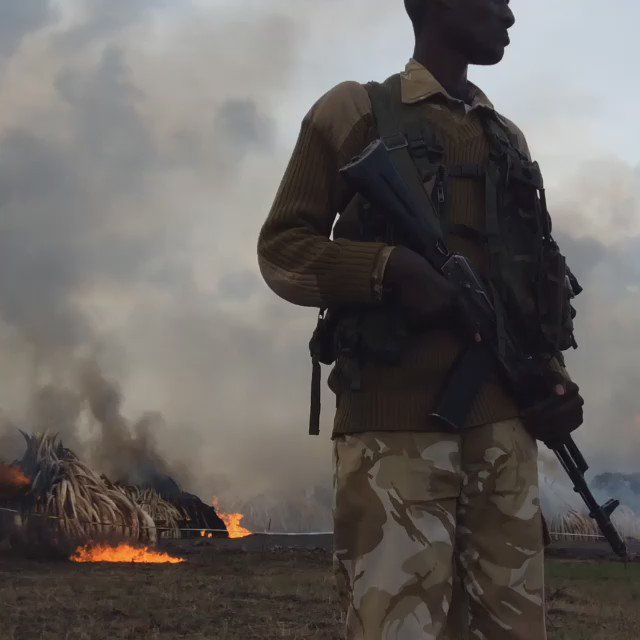 Scenes from #Ivoryburn site #Worthmorealive https://t.co/dwSgBnMcEv