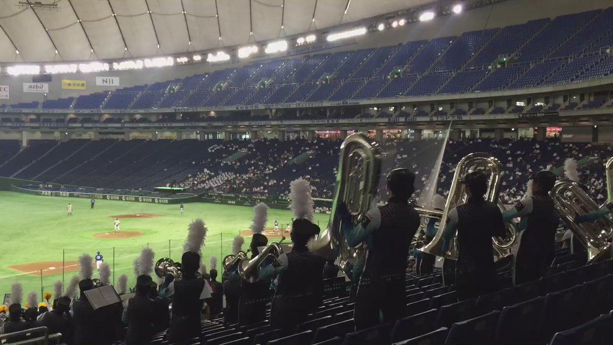 なんちゅう前奏してんだ。球場で聴けるものとしては間違いなく日本一のエルクンでしょう。 #大学野球 #環太平洋大学 #IPU https://t.co/JvLozpRXbB