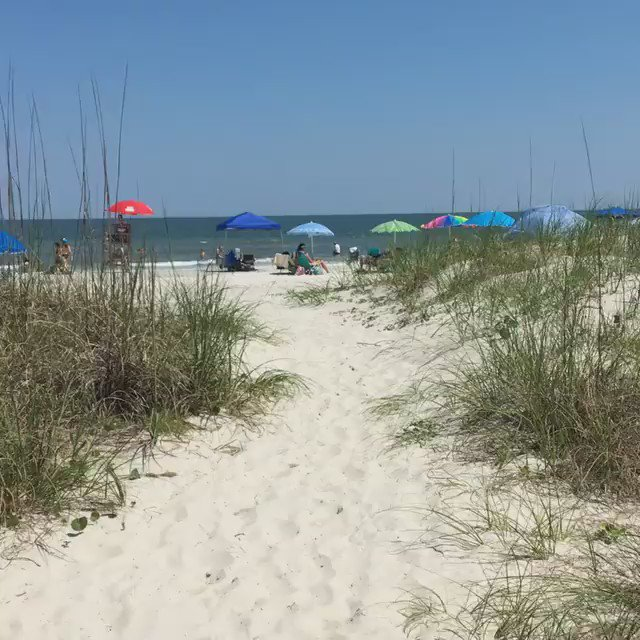 """Wouldn't you rather be here in #HiltonHead than at work today?"" - John Y."