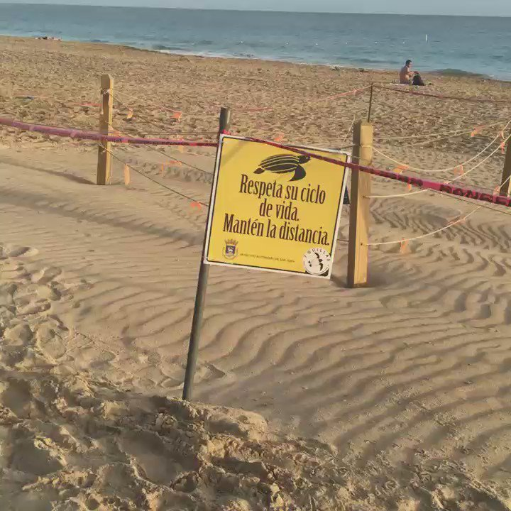 La playa de Ocean Park a las 6:15 a.m. de hoy tras la celebración de la #NochedeSanJuan. https://t.co/vb2BG9WX1f