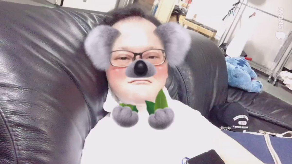 可愛い♡と思った人RT https://t.co/ve660P0ObW