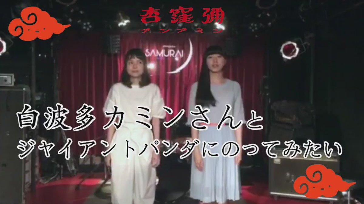 白波多カミンさん(@kamin30 )と「ジャイアントパンダにのってみたい」をおどったよ!ライブも共演できてうれしかった〜!謝謝🐼❗️