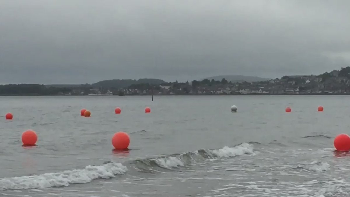 Finally managed to see some Dolphins at Broughty Ferry beach tonight. https://t.co/8Dwr8ScXLX