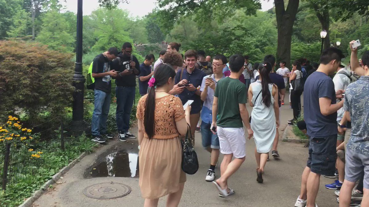 Pokemon GO is just insane right now. This is in Central Park. It's basically been HQ for Pokemon GO. https://t.co/3v2VfEHzNA