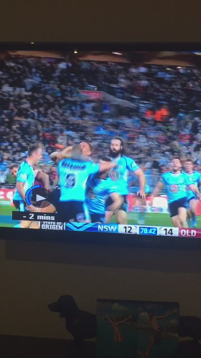 When you go to celebrate an Origin winning try and miss... https://t.co/eN5Uw92oxv