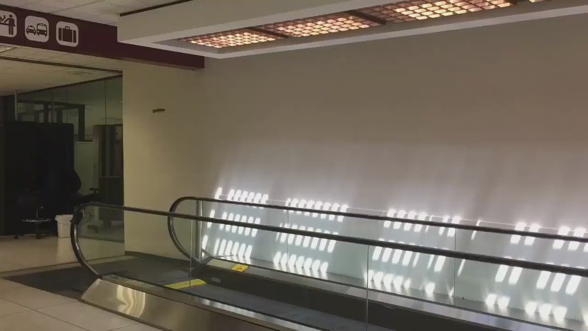 The best video of a small bird having fun on an airport moving walkway, that you will see all day https://t.co/rI79LYH4KF
