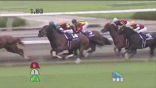 ジェンティルドンナ 2012 秋華賞