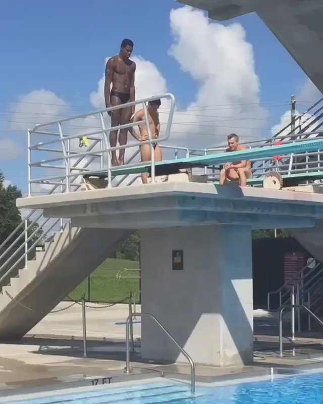 What a dive! Watch as