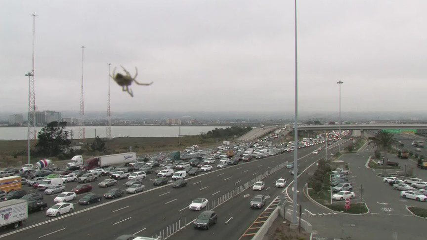 Would you rather sit in Bay Bridge toll plaza traffic or be eaten alive by this giant spider?