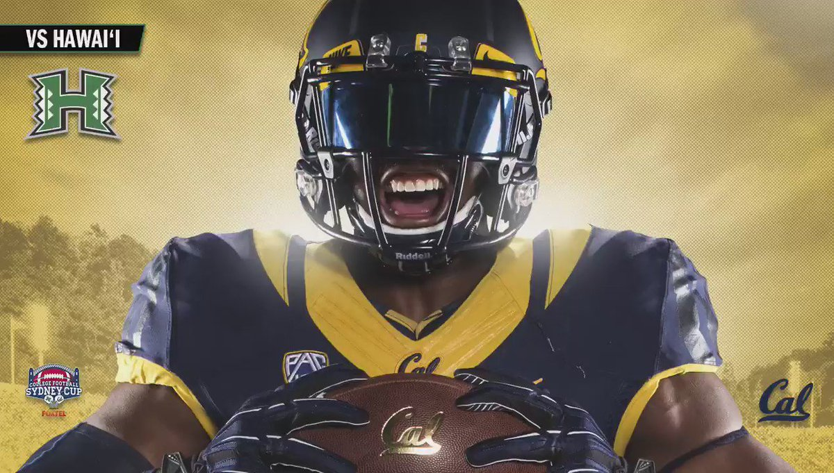 It's officially GAMEDAY! GoBears