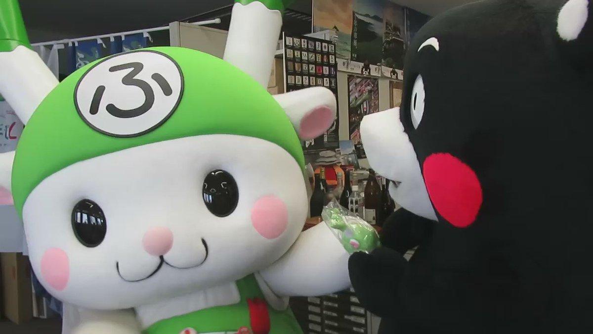 今日は、熊本県東京事務所に埼玉県深谷市のイメージキャラクターふっかちゃんが遊びに来てくれました♪ふっかちゃん、そして深谷市の皆さん、熊本県を応援してくまさり、ベリーベリーサンくまーです! https://t.co/qkjMtRsWaG