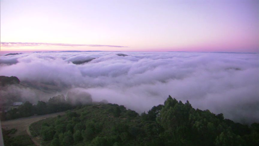 @KarlTheFog looking good on our East Bay Hills camera this morning. Thanks for the shot @MikeNiccoABC7!