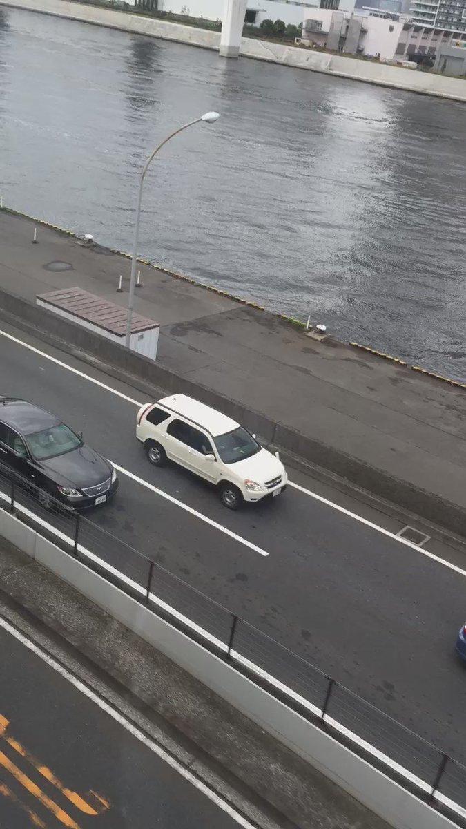 ラプラスがお台場レインボーブリッジに出現したことでポケモントレーナーが歩道のない道路上へなだれ込み、水上警察まで出動する大騒動に。 https://t.co/5xnDXsTp87