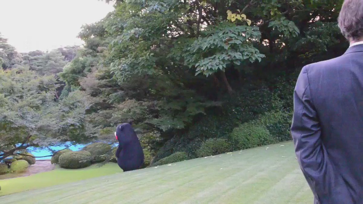 フランス大使公邸の庭園の芝生にくまもん @55_kumamon は大はしゃぎ。 https://t.co/STE6V1yUWG