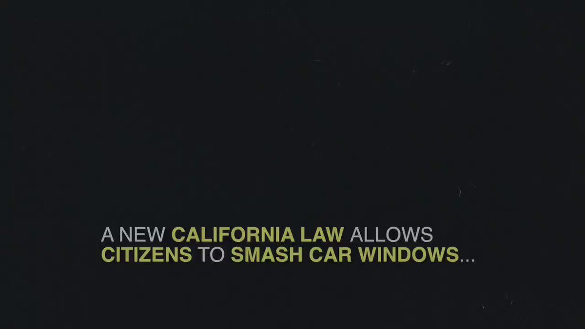 A new law in California allows citizens to smash car windows if an animal appears to be in danger.