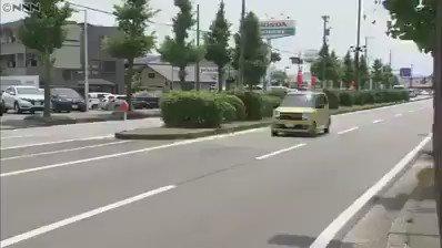 道路を渡りたい10羽のカルガモの親子しかし交通量が多く渡れない。すると、1台の車が・・・・・心の広い人だと感動しました! pic.twitter.com/Pg5CtiuzxP