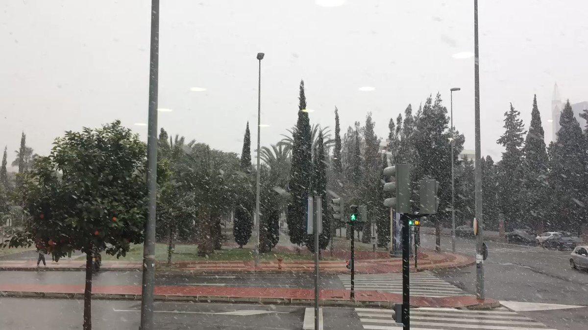 La nieve ya ha llegado a la ciudad de Murcia ¡histórico! ❄️❄️ ❄️ https...