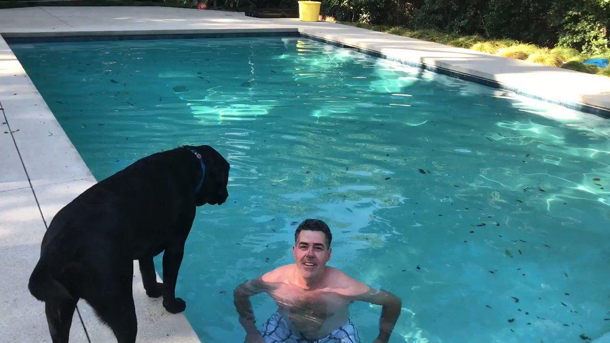 Carolla at the bottom of a pool:  https://pbs.twimg.com/ext_tw_video_thumb/824786052996947968/pu/img/hgHzqSIn1x4v2ESt.jpg