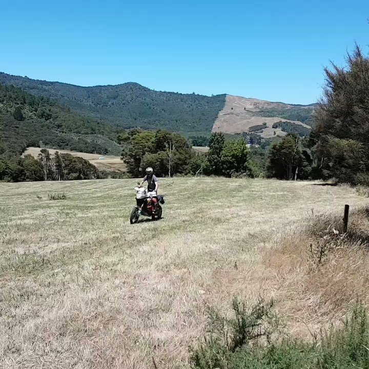 Practising my slow wheelies at our beautiful training spot. #newzealandismint https://t.co/LXjb9YtWz8