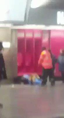 Vidéo - L'attaque canine qui choque la toile SuWwzSChv2C1_SiP