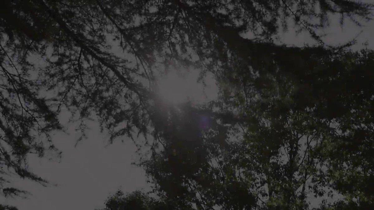慶應義塾の学生のキャンパスライフを中心としたイメージ動画です(2分01秒)。ぜひご覧ください。 https://t.co/Xoglf0vTPb