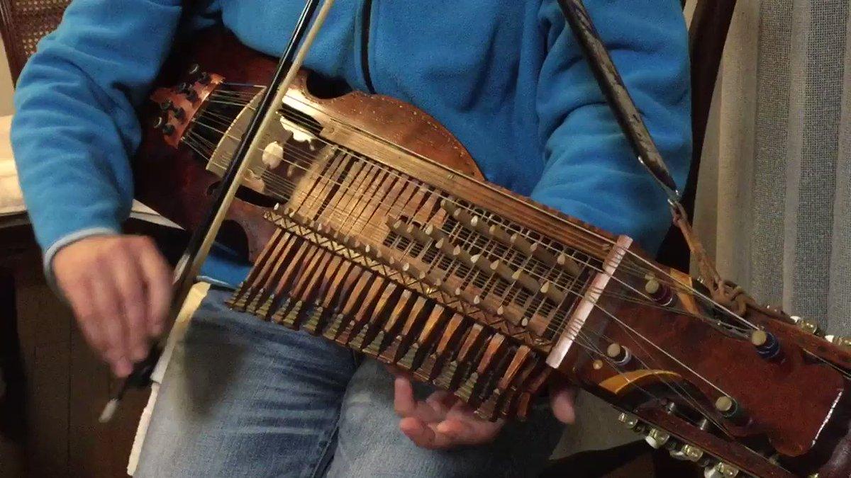 実家帰ったら姉が見たこともない楽器を弾き始めた。 pic.twitter.com/t4bC6J2C4w