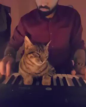 When you become the music.