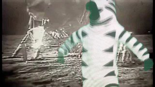 That's one small step for zebras.  Goodnight.   #JustAddZebra #chromakey #chromavid #humor #hbo #LastWeekTonight
