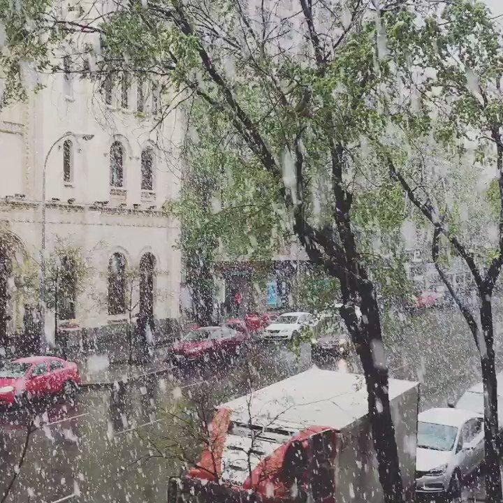 ¿Vamos sacando ya las quitanieve o qué? #nieve #Madrid https://t.co/Tm...