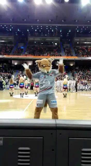 Wir sind im @EHF Cup Viertelfinale! Oh wie ist das schön! #EHFCup #handball #UnserRevier https://t.co/RbBznAPK7D