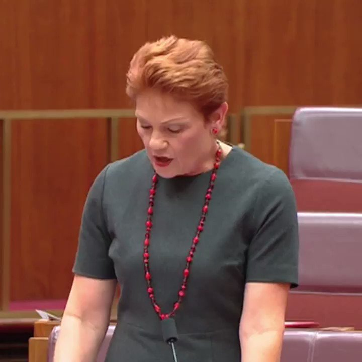Senator Hanson challenged anyone to prove that she's ever said something racist.  If you insist. https://t.co/nlPgtiJkRG