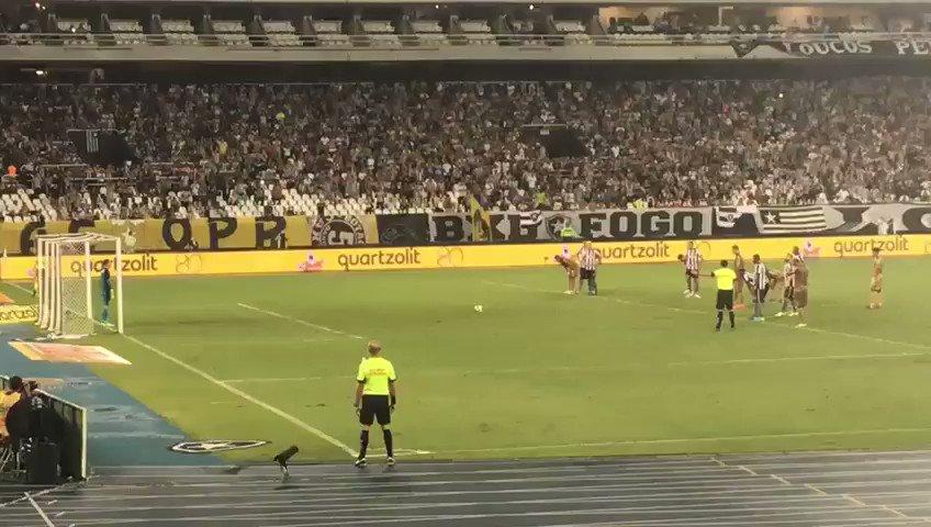 Tá aí! A defesa de Gatito Fernández na cobrança de pênalti! #VamosFOGO