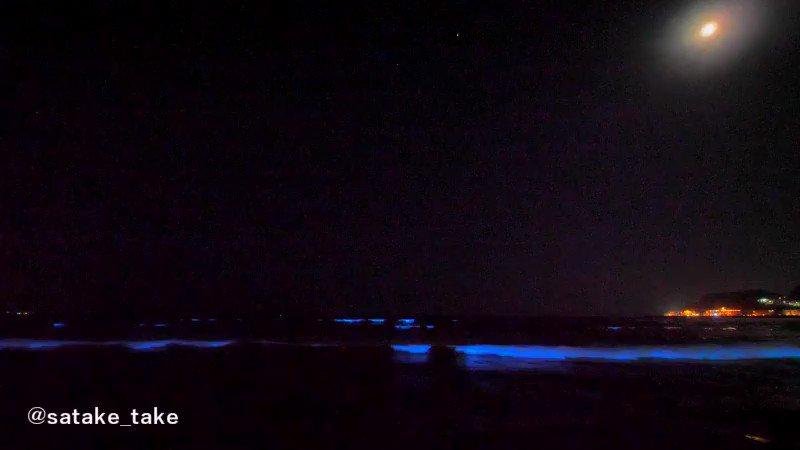 鎌倉の赤潮で発生した夜光虫現象を動画で撮りました。とても幻想的な光景でした。 2017年5月5日@由比ガ浜海水浴場