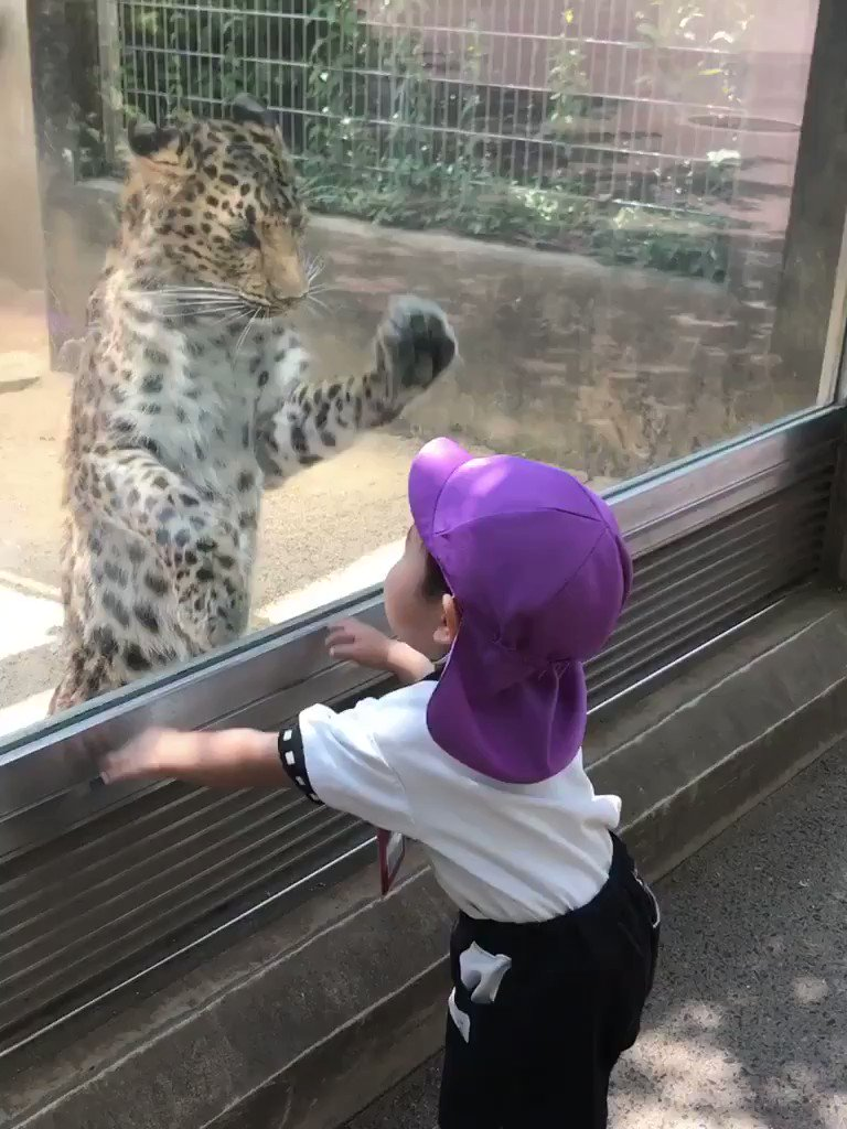 わーい!たーのしー! pic.twitter.com/4nzBABefaH