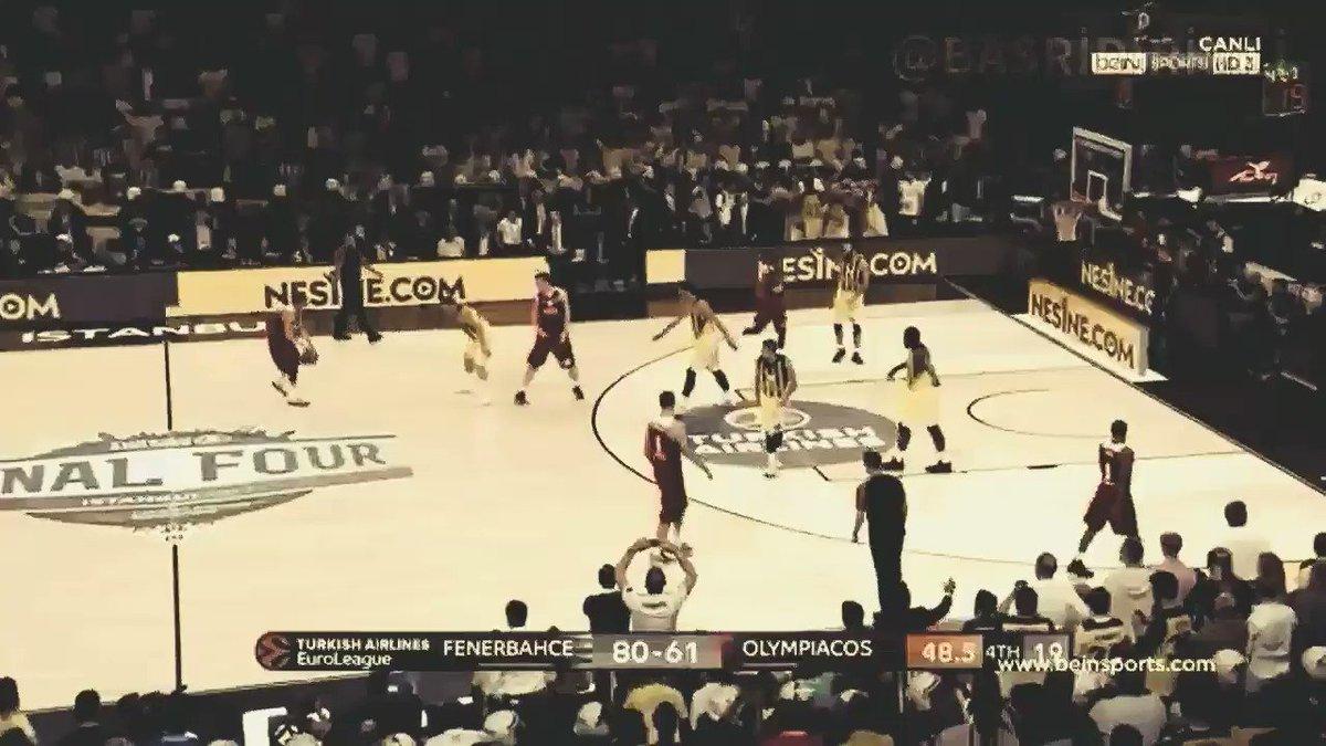 Kral Biziz Bu Alemde.. #Fenerbahçe #FENE...