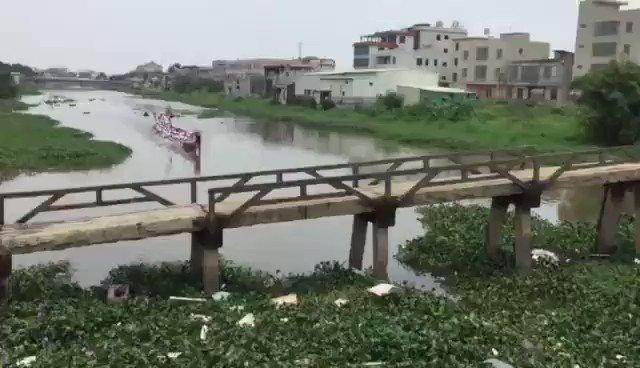我都要笑死了,杨舒平同学回中国帮忙扒水浮莲吗? https://t.co/5G4Kz8gvgo
