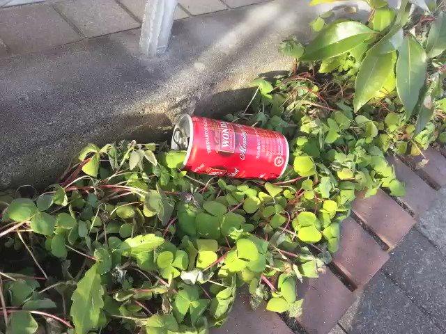 「庭に空き缶が投げ込まれていた時の対処法」を動画にまとめました https://t.co/pQTKAOG0lP