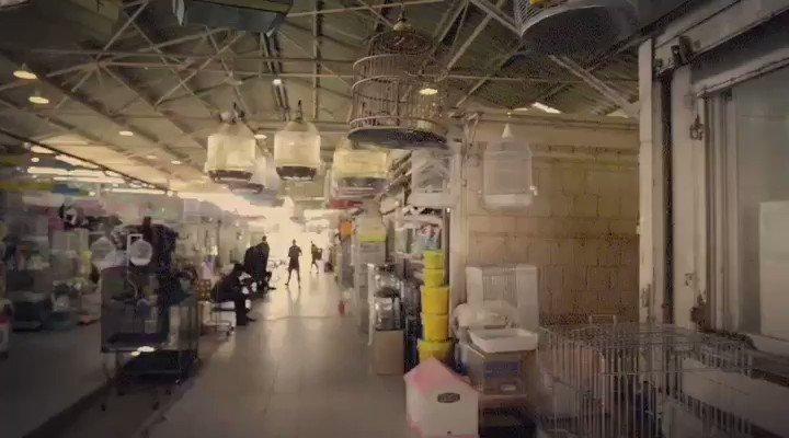 سوق الطيور (سوق الجمعة) - اليوم 7/6/2017 #إغلاق_سوق_التعذيب https://t.co/ywhX2KNlma