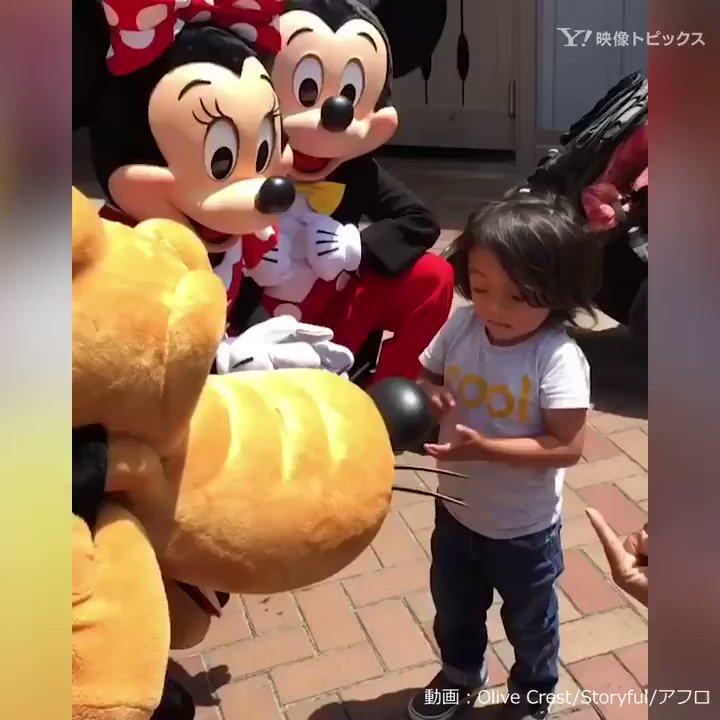 耳の聞こえない男の子と出会ったミッキーたちは……さすがです。#ディズニーランド pic.twitter.com/QfCTlclclw