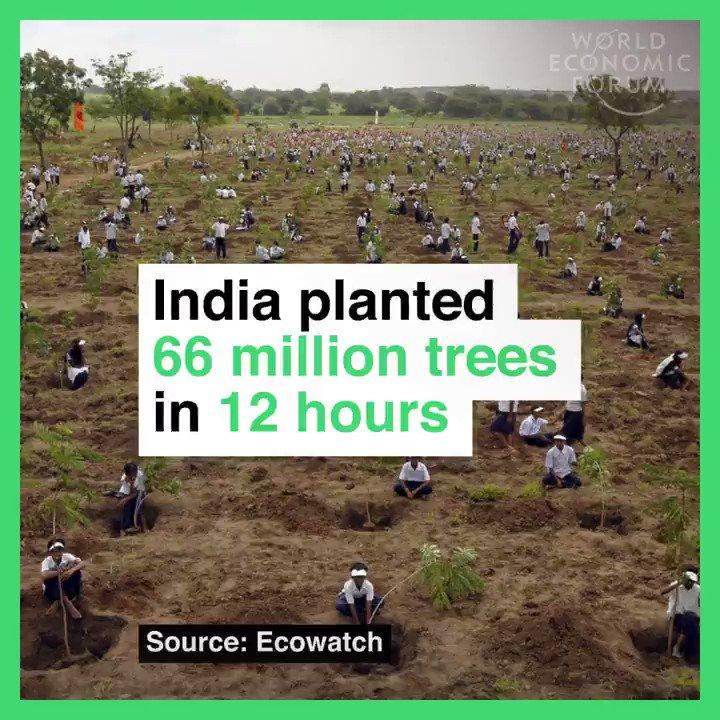 Going green. Read more: https://t.co/pwS7vzTE5k https://t.co/naUo5CYqHs