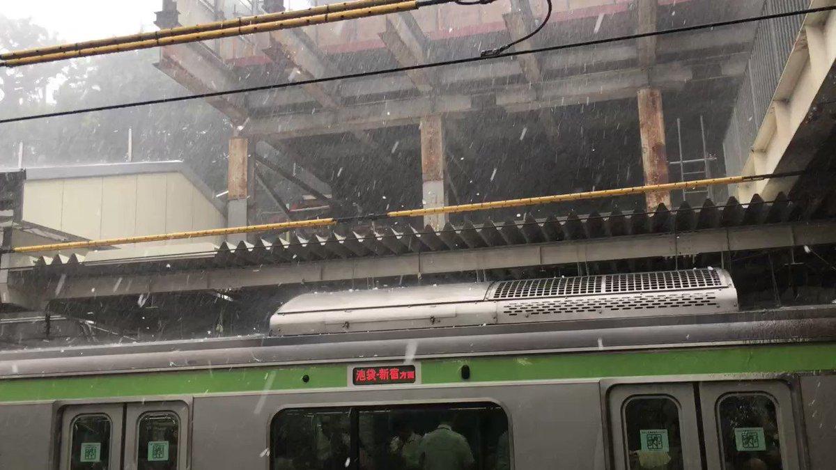 雹でこの世の終わりみたいになってる https://t.co/a243ZQJsbJ