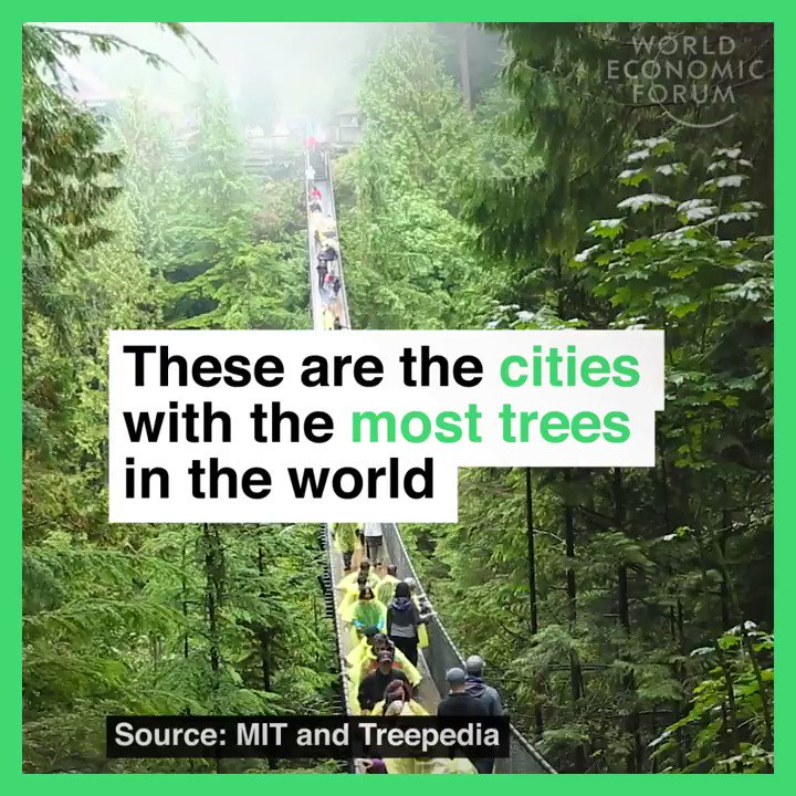 Over a quarter of Singapore is green. Read more: https://t.co/rnHNpbQrWW