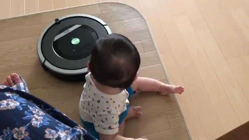 번역) 평소에는 로봇청소기를 무서워하던 고양이였지만, 룸바가 아이를 공격하는 중이라 여기고 청소기에게 달려들었다고.  https://t.co/BEJEuLN1uM